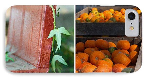 Pumpkins Phone Case by Rebecca Cozart