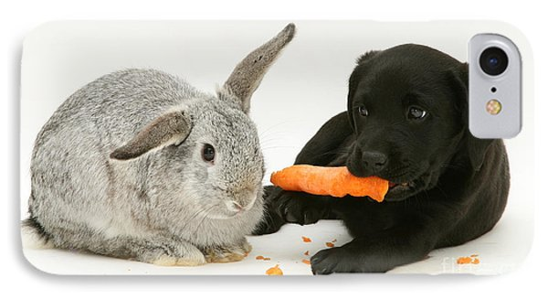 Pup Steals Rabbits Carrot IPhone Case by Jane Burton