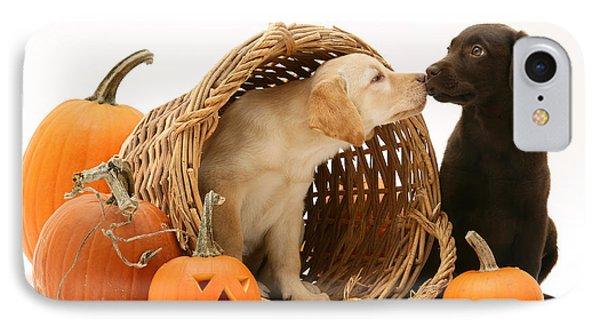 Puppies At Halloween IPhone Case by Jane Burton