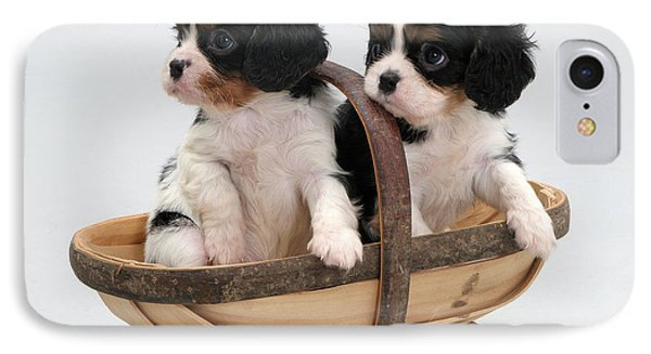 Puppies In A Trug Phone Case by Jane Burton