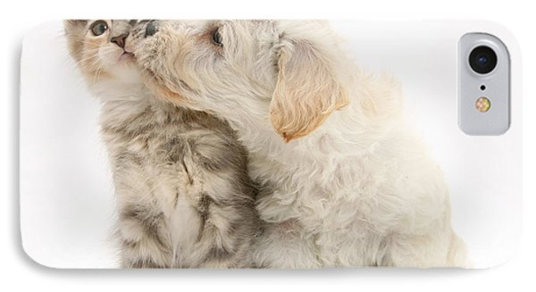 Puppy Nuzzles Kitten Phone Case by Jane Burton
