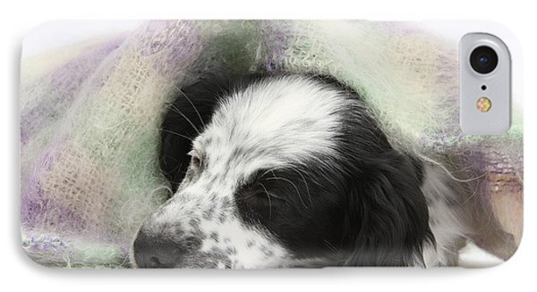 Puppy Sleeping Under Scarf Phone Case by Mark Taylor