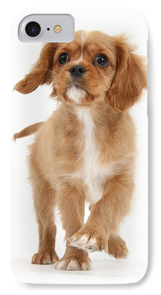 Puppy Trotting Foward IPhone Case by Mark Taylor