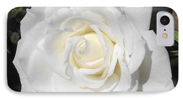Pure White Rose IPhone Case