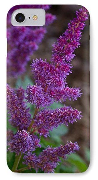Purple Astilbe Bloom 2 IPhone Case
