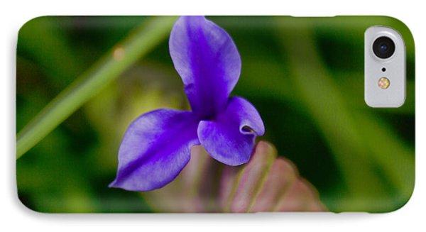 Purple Bromeliad Flower Phone Case by Douglas Barnard