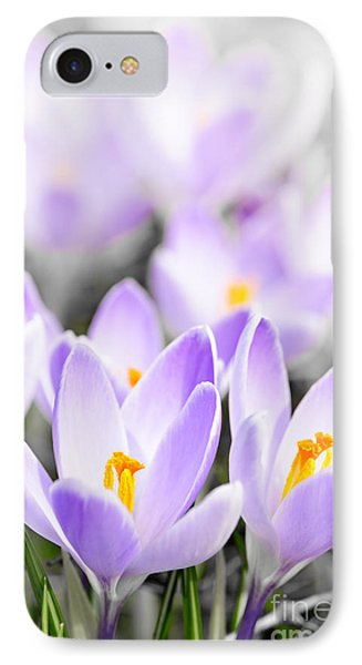 Purple Crocus Blossoms Phone Case by Elena Elisseeva