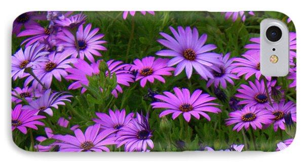 Purple Daisies Square Phone Case by Carol Groenen