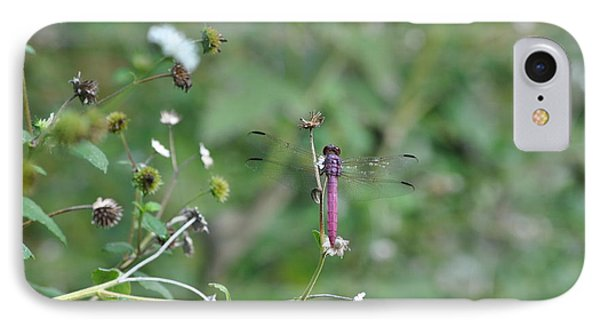 IPhone Case featuring the photograph Purple Dragon Fly by Jodi Terracina