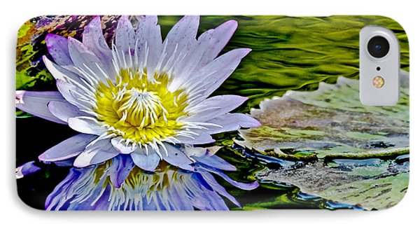 Purple Water Lily IPhone Case by Carol F Austin