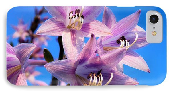 IPhone Case featuring the photograph Purple Hosta Blooms by Davandra Cribbie