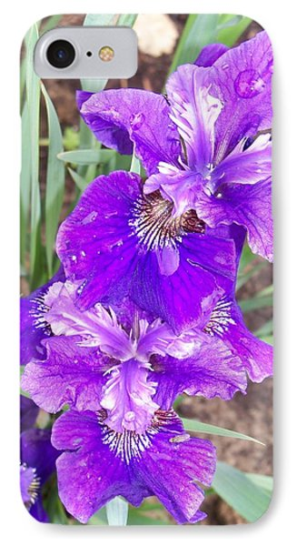 Purple Iris With Water Droplet IPhone Case