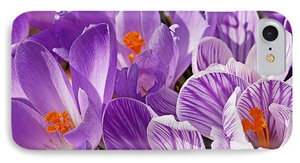 Purple Oh Purple IPhone Case