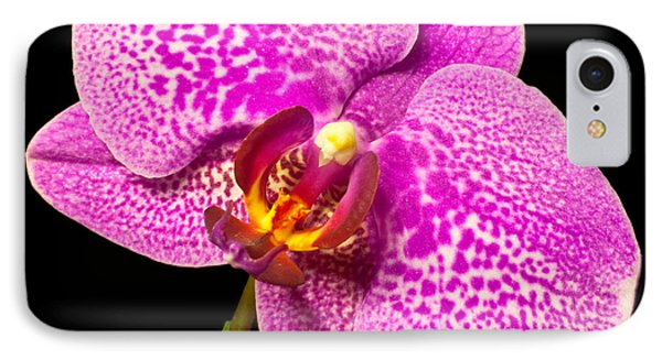 IPhone Case featuring the photograph Purple Orchid Bloom by Michael Waters
