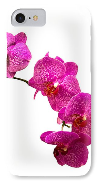 IPhone Case featuring the photograph Purple Orchid On White by Michael Waters
