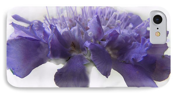IPhone Case featuring the photograph Purple Pincushin by Debbie Portwood