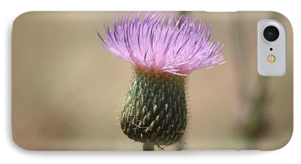 IPhone Case featuring the photograph Purple Thistle by Donna  Smith