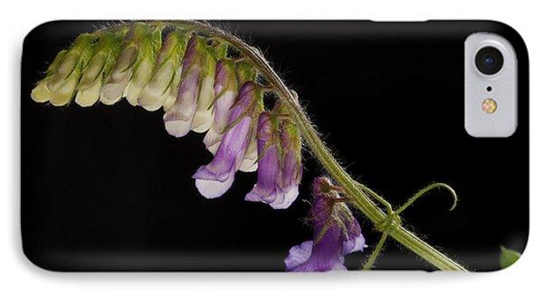 Purple Vetch IPhone Case by Art Whitton
