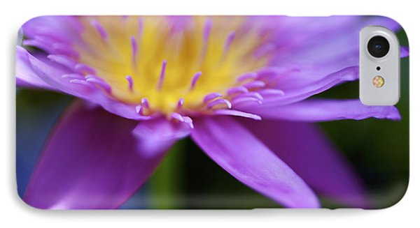 Purple Water Lily Petals Phone Case by Kicka Witte