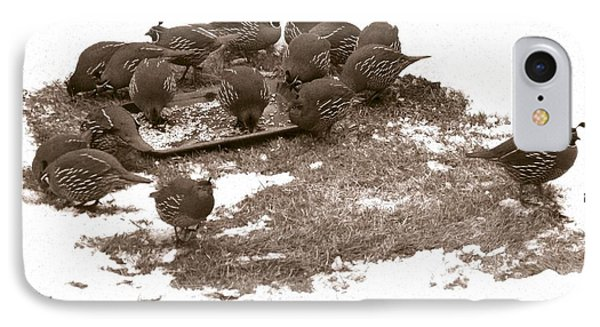 Quail Having Lunch Phone Case by Will Borden