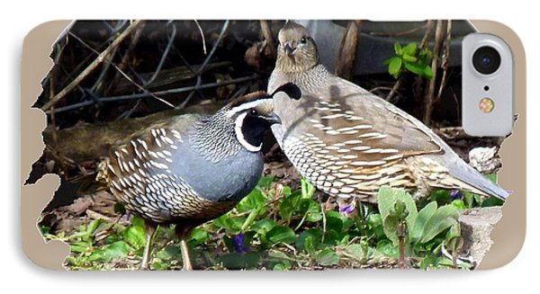 Quail Mates Phone Case by Will Borden