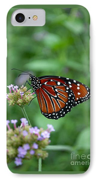 IPhone Case featuring the photograph Queen Butterfly by Eva Kaufman