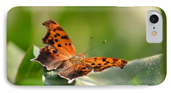 IPhone Case featuring the photograph Question Mark Butterfly by JD Grimes