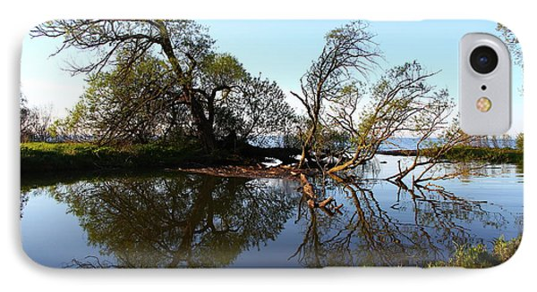 IPhone Case featuring the photograph Quiet Reflection by Davandra Cribbie