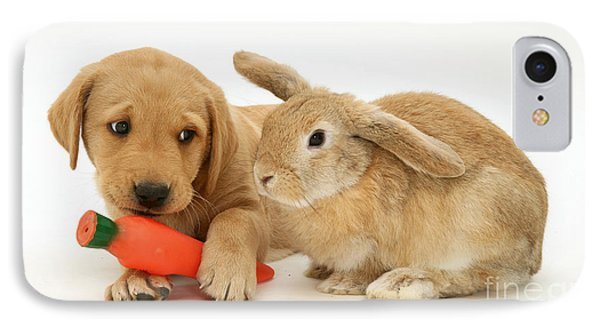 Rabbit Watches Pup With Carrot Squeaky IPhone Case by Jane Burton