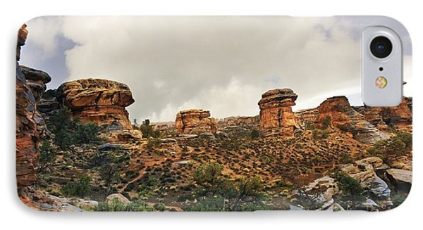 Rain At The Needles District Phone Case by Marty Koch