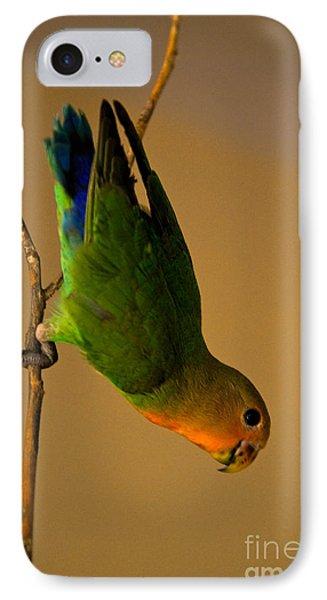 Rainbow Bird Phone Case by Syed Aqueel