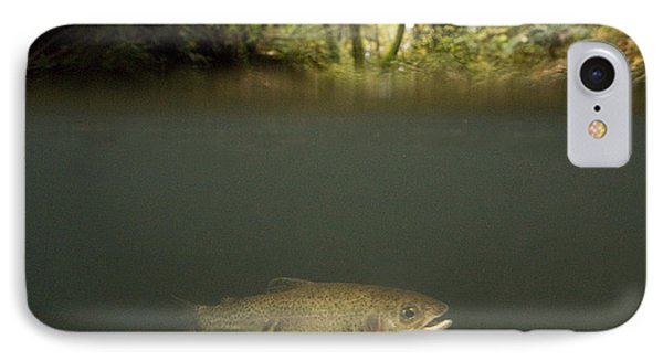 Rainbow Trout In Creek In Mixed Coast Phone Case by Sebastian Kennerknecht