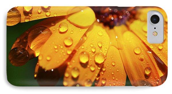 Raindrops On Daisy Phone Case by Thomas R Fletcher