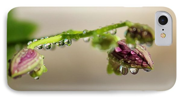 Raindrops On Orchid Buds Phone Case by Theresa Willingham