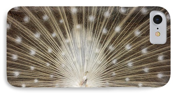 Rare White Peacock IPhone Case by Larry Marshall