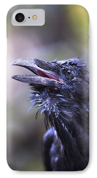 Raven Hyder, Alaska, Usa Phone Case by Richard Wear