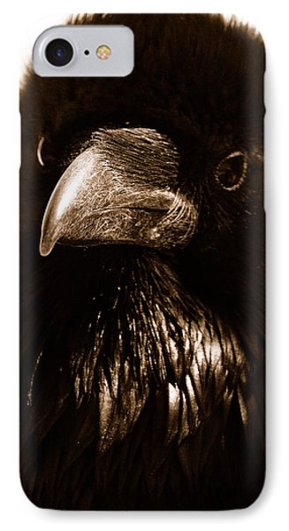 Raven In Black IPhone Case by Michael Cinnamond