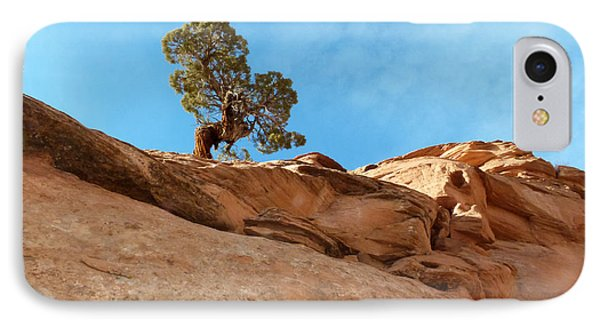 Reaching For The Sun Phone Case by Bob and Nancy Kendrick