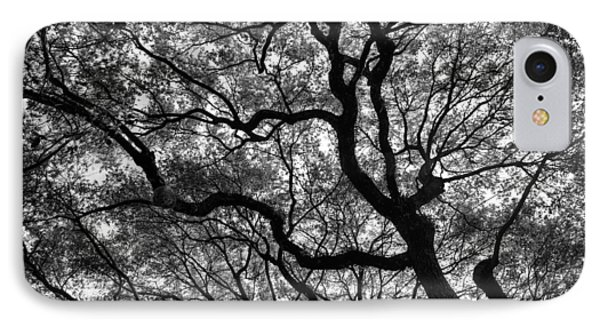 Reaching To The Heavens Phone Case by Andrew Crispi