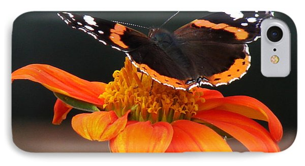 Red Admiral Phone Case by Nicola Butt