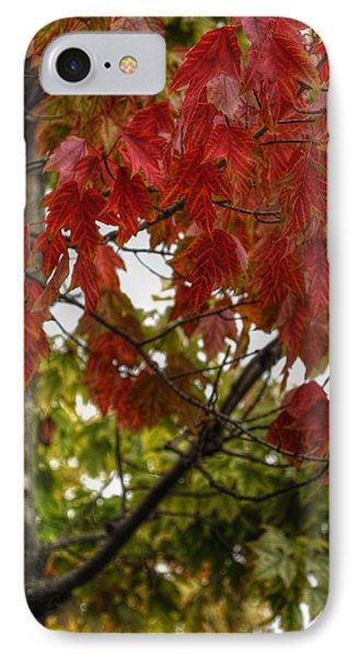 IPhone Case featuring the photograph Red And Green Prior X-mas by Michael Frank Jr