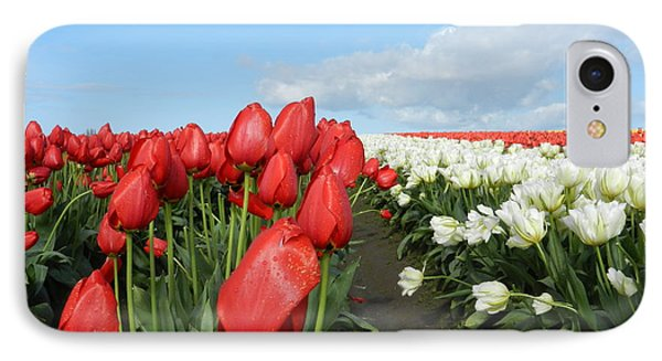 IPhone Case featuring the photograph Red And White Tulips by Karen Molenaar Terrell