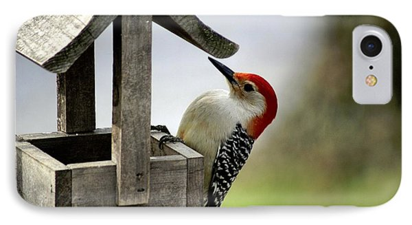 Red Bellied Woodpecker Phone Case by L Granville Laird