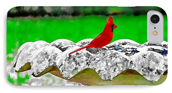 Red Bird In Bath IPhone Case