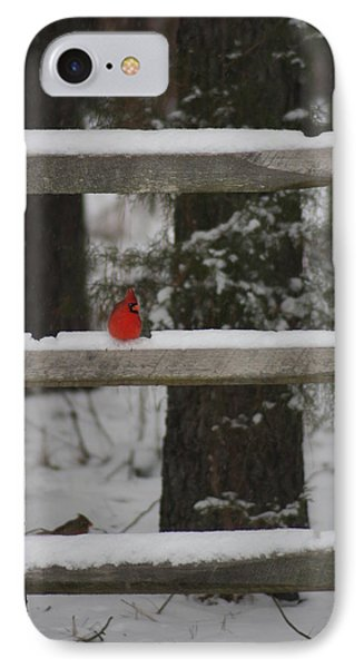 Red Bird IPhone Case by Stacy C Bottoms