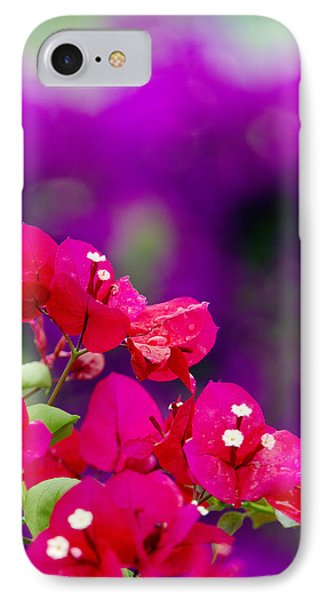 Red Bougainvillaeas Phone Case by Ron Dahlquist