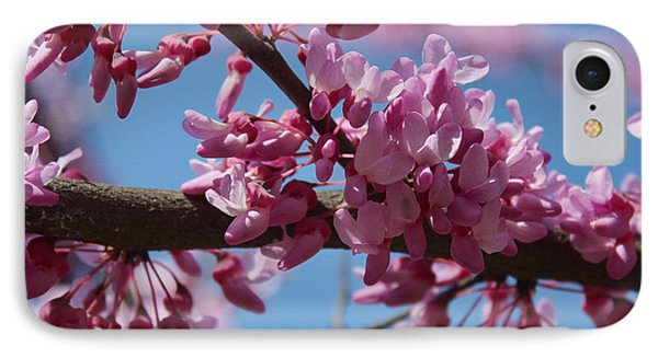 IPhone Case featuring the photograph Red Bud In Bloom by Kathleen Holley