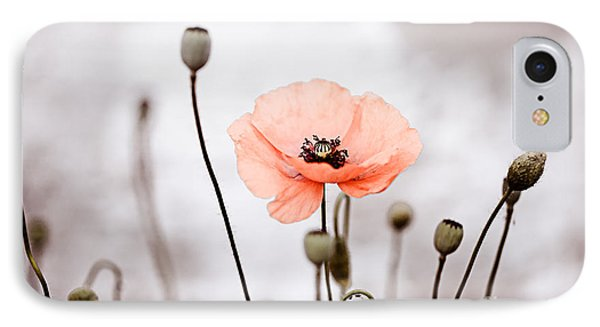 Red Corn Poppy Flowers 01 IPhone Case by Nailia Schwarz