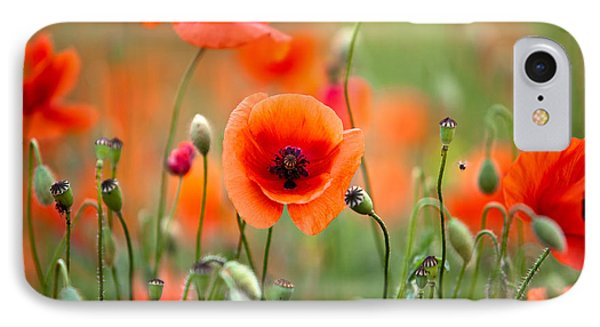 Red Corn Poppy Flowers 05 IPhone Case by Nailia Schwarz
