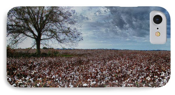 Red Cotton And The Tree IPhone Case by Michael Thomas